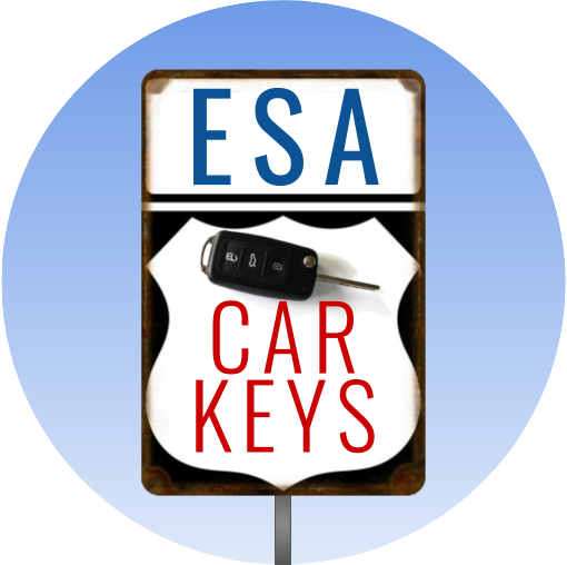 esa-car-keys